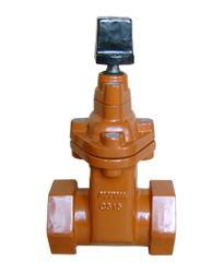Screw End NRS Resilient Seated Gate Valves