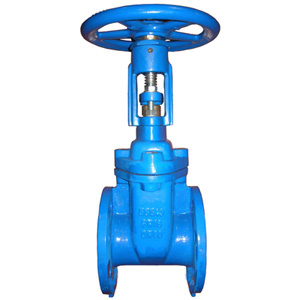 Flanged End OS&Y Resilient Seated Gate Valve